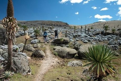 טיול בפארק הלאומי הרי באלה - עותק