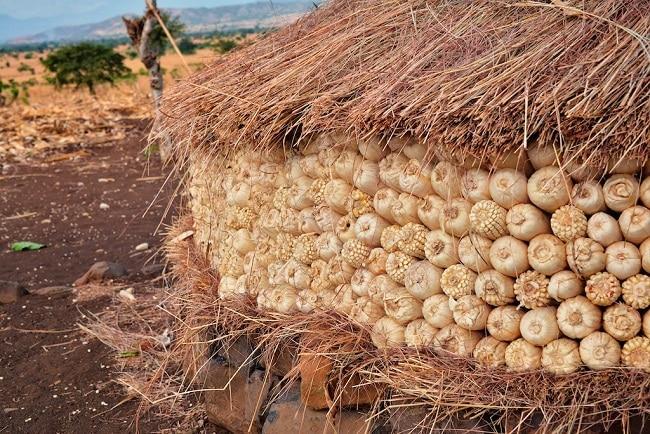 אסם תירס, קונסו, אתיופיה