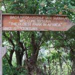 היער הלאומי מנגאשה – Menagesha