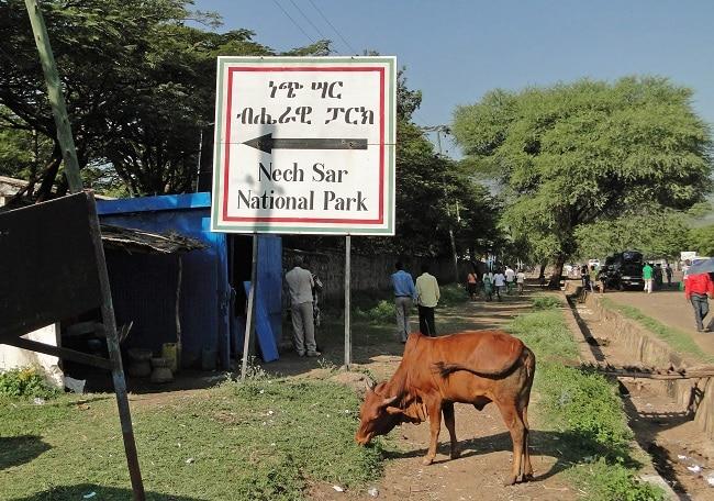 הפארק הלאומי נשיסר- Nechisar